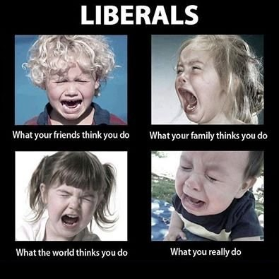 The truth about Liberals!