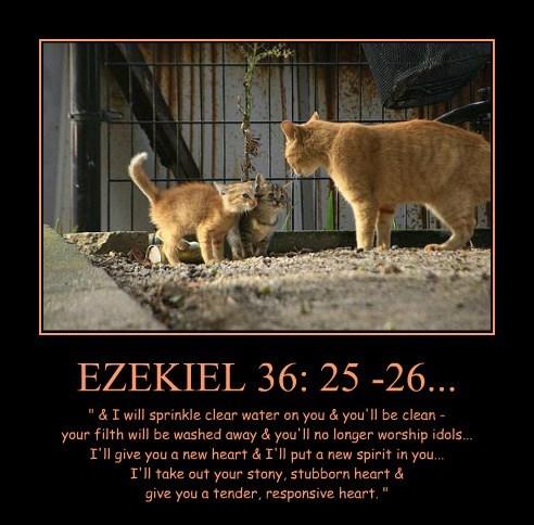 Cheezburger Image 8224971776