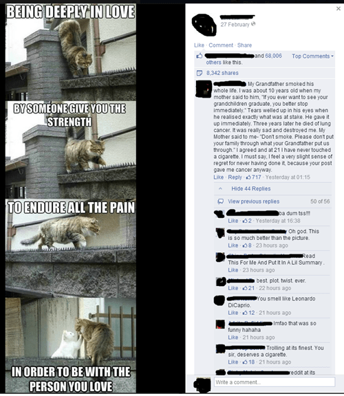 trolling Wait For It cancer failbook - 8225053696