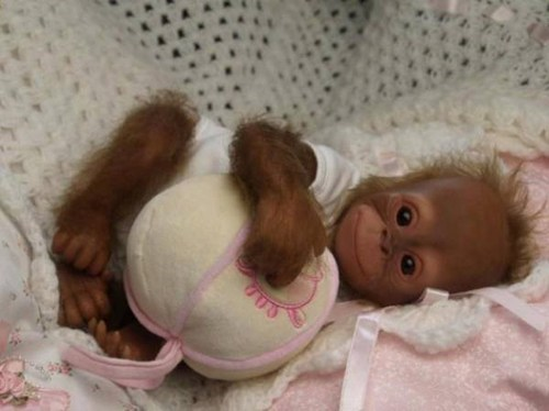 Babies,apes,cute,smile
