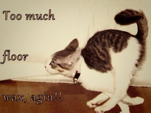 Cats slippery floor wax - 8225525248