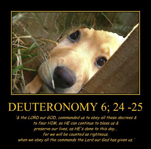 DEUTERONOMY 6; 24 -25 '& the LORD our GOD, commanded us to obey all these decrees & to fear HIM, so HE can continue to bless us & preserve our lives, as HE's done to this day... for we will be counted as righteous, when we obey all the commands the Lord our God has given us.'