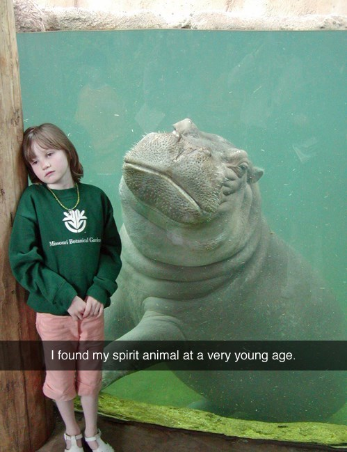 swimming spirit animal hippo - 8225725184