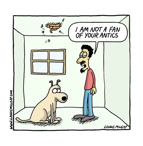 dogs,antics,web comics