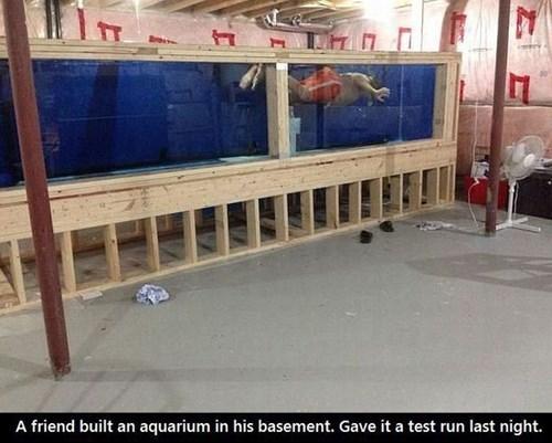 aquarium pool DIY - 8225815040
