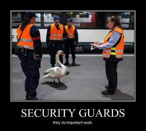 funny wtf swan security guards