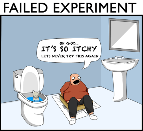 Cats,experiments,toilets,web comics,liter box