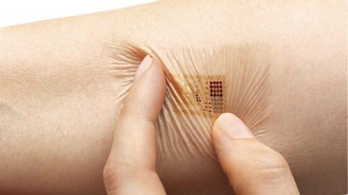 biology science sensor vital signs - 8226861056
