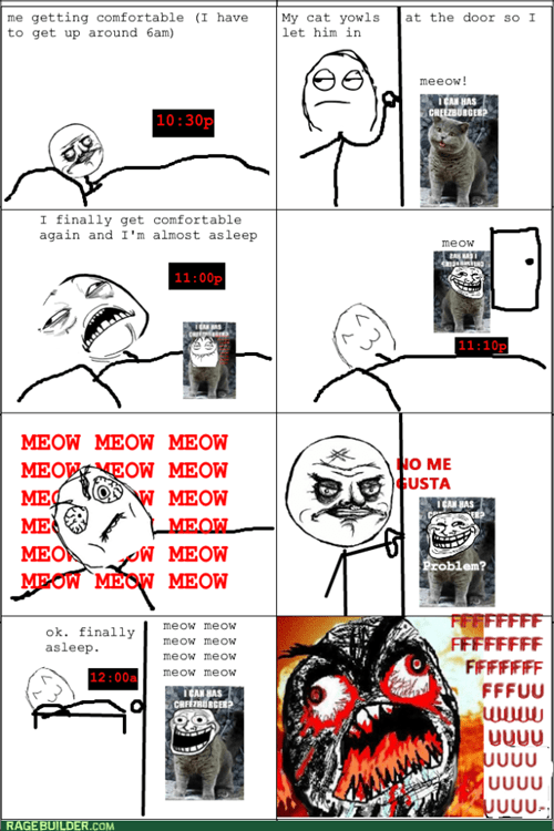 Cats,sleep,trollface,rage