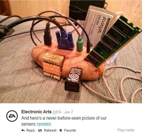 twitter servers EA potatoes - 8227120128