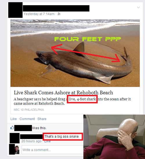 facepalm,shark,snake