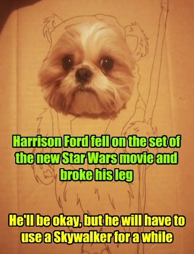 Harrison Ford fell on the set of the new Star Wars movie and broke his leg He'll be okay, but he will have to use a Skywalker for a while