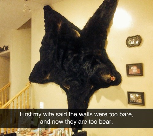 bears,drugs,decor,puns