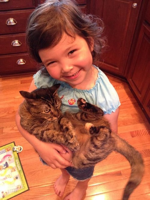 Cats,patience,kids,grouchy