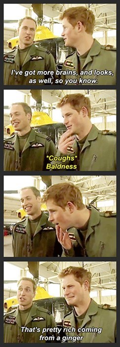brother,hair,parenting,teasing,Prince Harry,prince william,sibling rivalry,g rated
