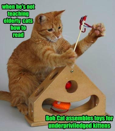 Cats - 8231459072