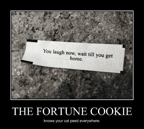 fortune cookie funny ominous wtf - 8231751168