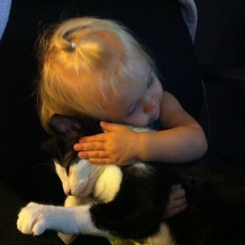 kids,cute,parenting,Cats,hug