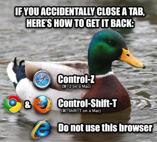 browsers,Actual Advice Mallard,google chrome,mozilla firefox