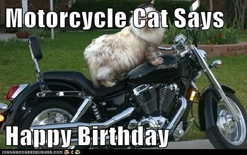 Motorcycle Cat Says Happy Birthday