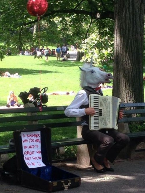 accordion,mask,unicorn,poorly dressed,street performer,unicorn mask,g rated