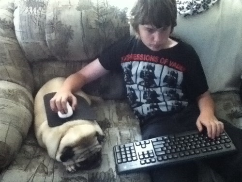 This Pug is a True Gamer