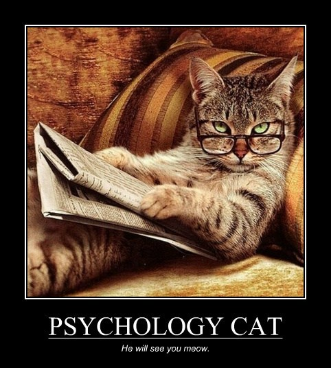 PSYCHOLOGY CAT He will see you meow.