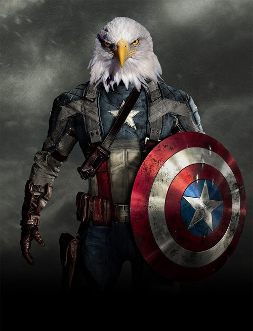 captain america,eagles,movies,marvel