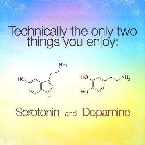 serotonin biology funny doapmine - 8235307776