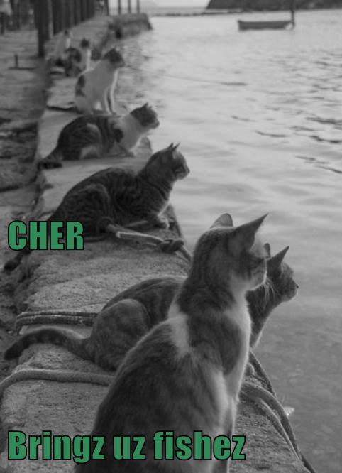 Cheezburger Image 8235331840