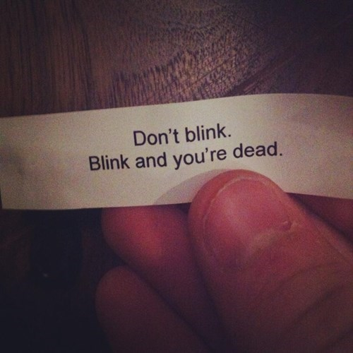 fortune cookie,dont-blink,weeping angels