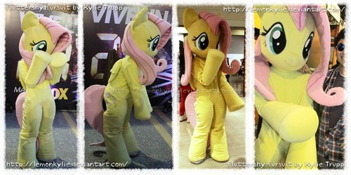 awesome cosplay fluttershy - 8235631104