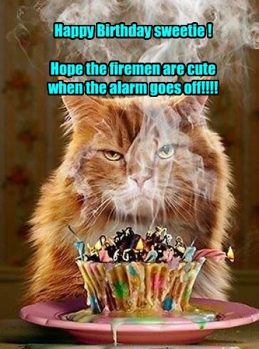 Happy Birthday sweetie ! Hope the firemen are cute when the alarm goes off!!!!