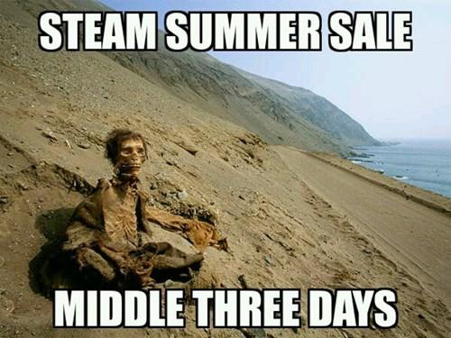 steam sales steam steam summer sales - 8236525312