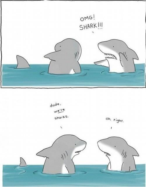 critters sharks web comics - 8236717056