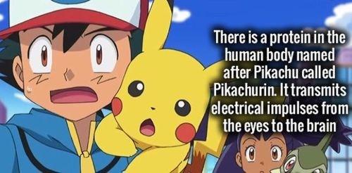biology Pokémon pikachu - 8236802560