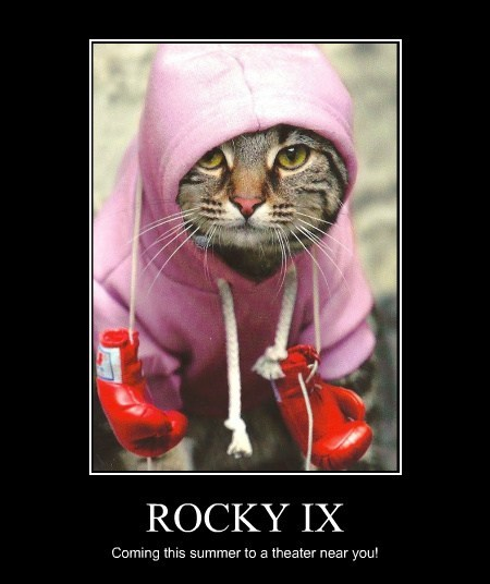 ROCKY IX Coming this summer to a theater near you!