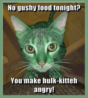 Cats,the hulk,featured user,greencliff