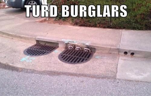 poop sewer puns raccoons - 8237867264