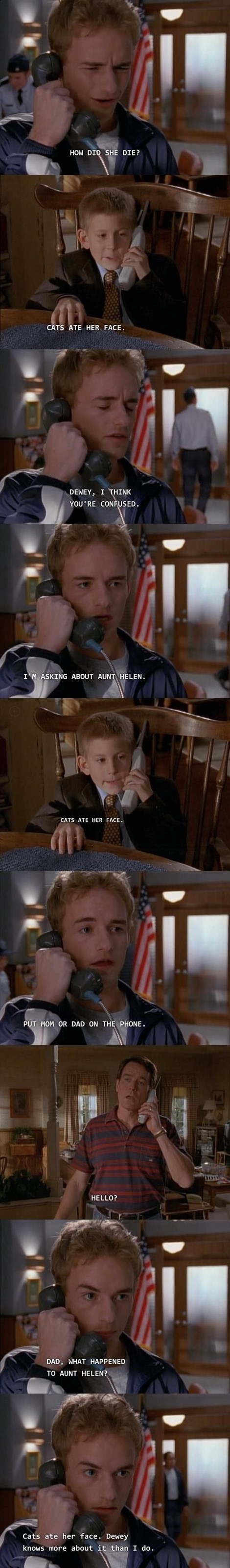 Cats malcolm in the middle TV - 8237964288