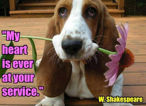 """My heart is ever at your service."" W. Shakespeare"
