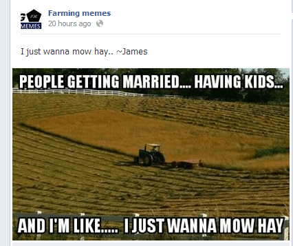 dating facebook relationships farming memes - 8239325696