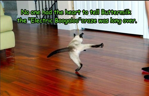 "No one had the heart to tell Buttermilk the ""Electric Boogaloo""craze was long over."
