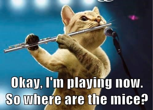 pied piper flute mice Cats - 8240000512