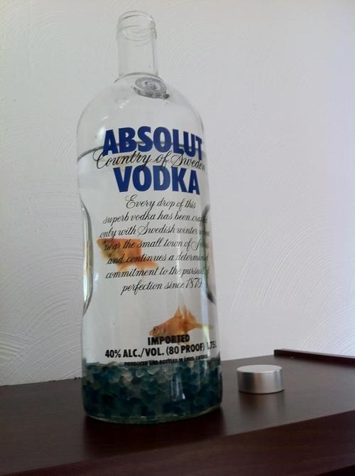 awesome,fish,funny,vodka,after 12,g rated