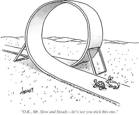 tortoise loops hare web comics - 8240339712