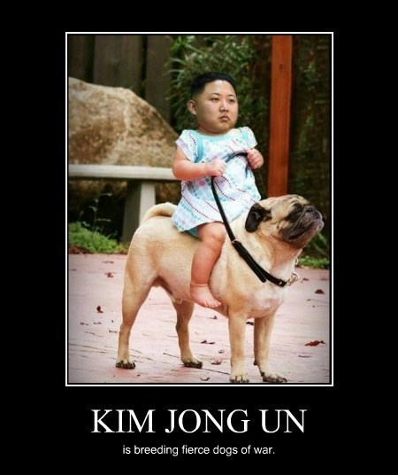 cute dogs of war funny kim jong-un