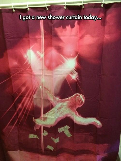 Sloths Weird Shower Curtain