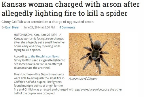 Kill It With Fire Probably bad News Rage Comics spiders g rated fail nation - 8240559872