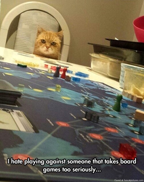 Cats,board games